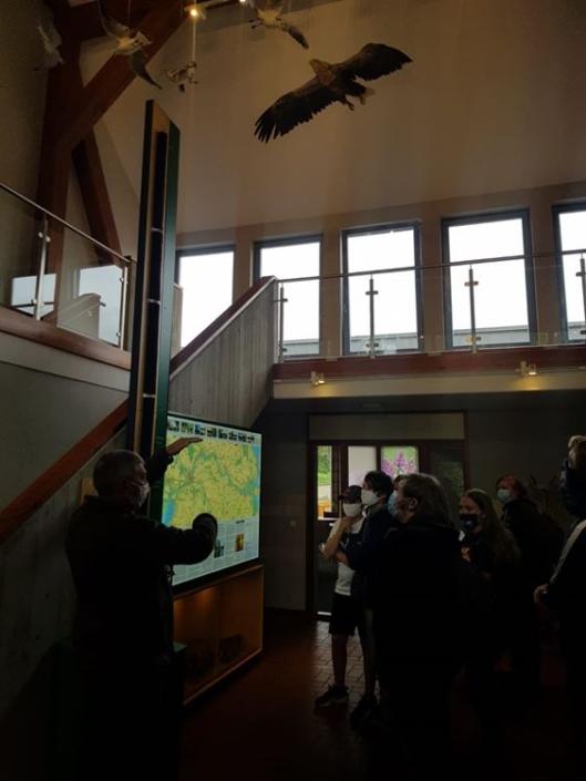 Informatives zum Naturpark Flusslandschaft Peenetal